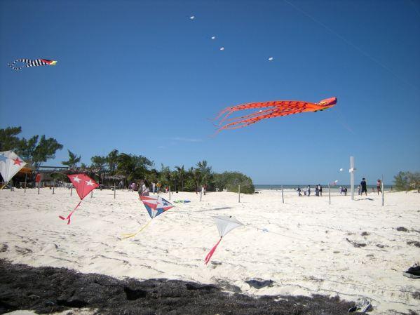 kite arch & octopus