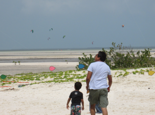 Public enjoys the kites while kite boarders surf in the lagoon